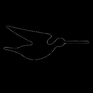 Accesorios Snipe