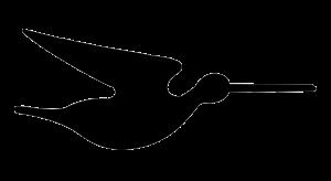 Clase Snipe Logo